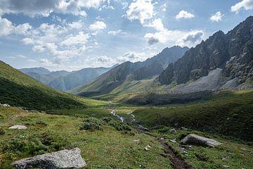 Groene vlakte tussen de bergen van Tian Shan van Mickéle Godderis