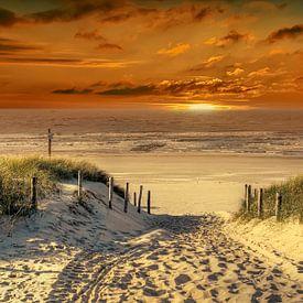 Weg durch die Dünen zum Strand von Peter Roder