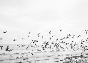 Am Meer II von Raisa Zwart