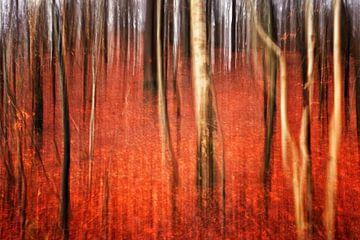 Autumn Forest van Alexander Voss