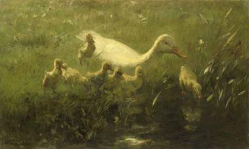 Weiße Ente mit Küken, Willem Maris