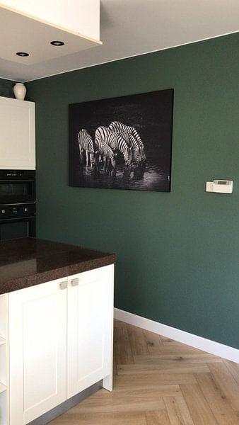 Kundenfoto: Trinkende Zebras von Jan Schuler, auf medium_13