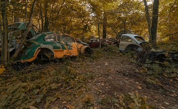 VW bugs van romario rondelez