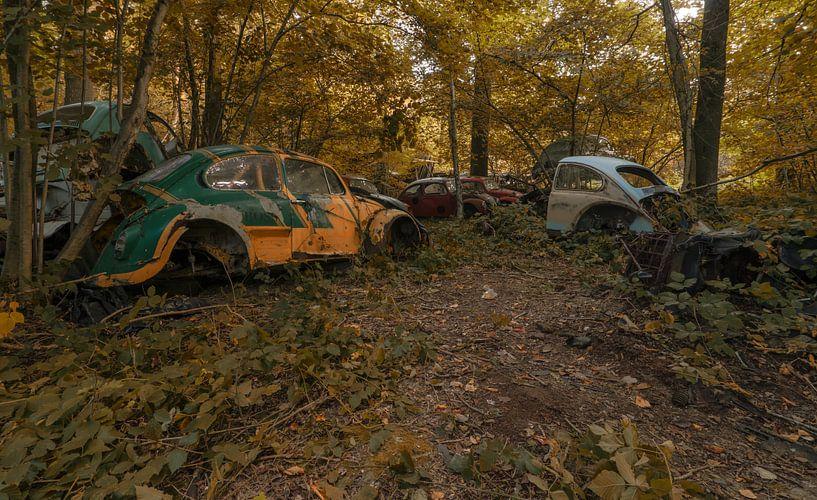 VW bugs von romario rondelez