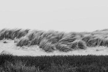 Zwart wit duinen in het Westduinpark in Scheveningen van Anne Zwagers