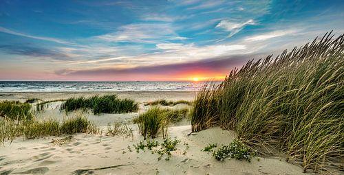 Paal 15 duin zonsondergang - Texel van
