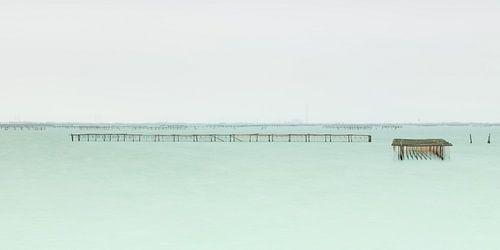 Vissers Netten van Marieke Feenstra