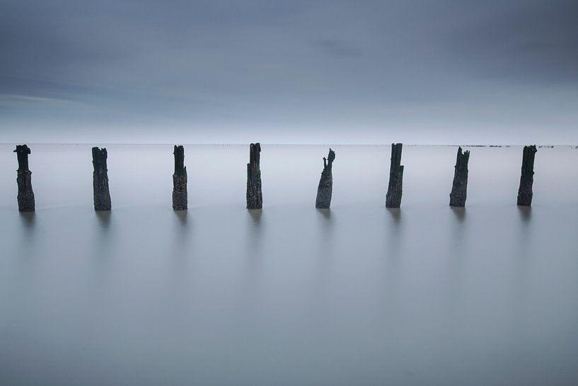 Pieux sur la mer des Wadden. sur AGAMI Photo Agency