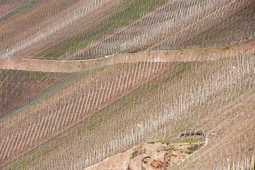 Ritme van de wijngaard van Jim van Iterson