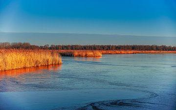 Winterlandschap ondergaande zon op bevroren meer met riet. van Erwin Floor