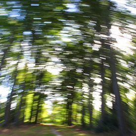 Bewegend bos 5 sur Peter Heins