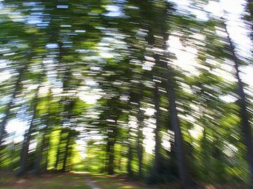 Bewegend bos 5 van Peter Heins
