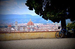 Zicht op Florence, Toscane, Italië van