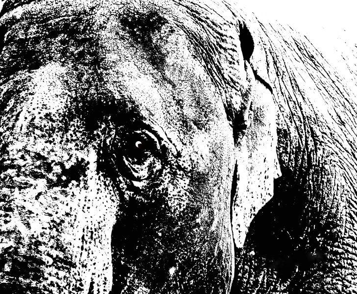 Elephants Dream von Artelier Gerdah