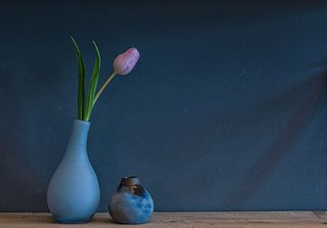 Frühlingstulpe! von Carla Walk