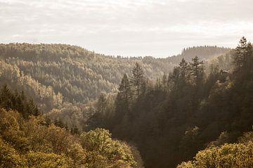 Herfst in Ardennen van Nancy van Verseveld