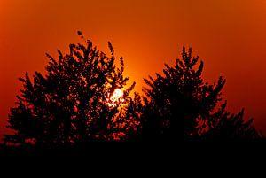 A Sundown