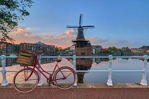 Fiets, bloemen, zonsopkomst en molen met perfecte reflecties van Harro Jansz