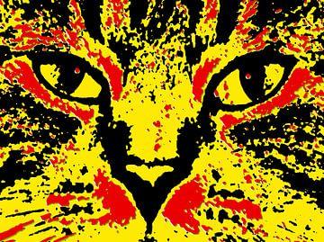 Oog in oog met een kat van McRoa