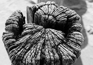 Strandpfosten schwarz und weiß von Sky Pictures Fotografie