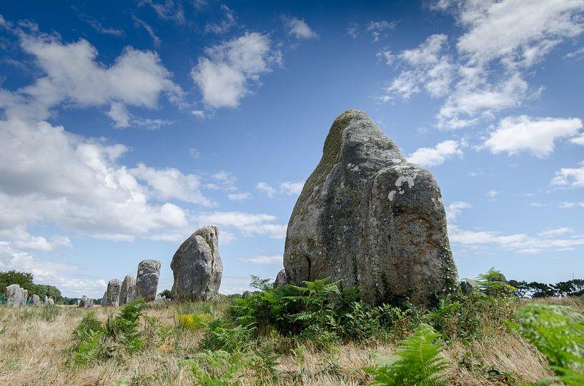 Megalieten in Carnac van Mark Bolijn