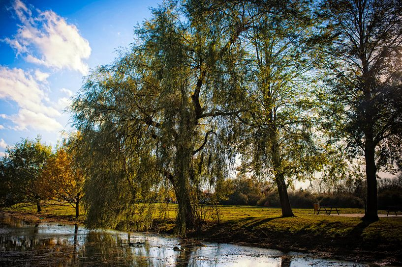 Brabant van Huibert van der Meer