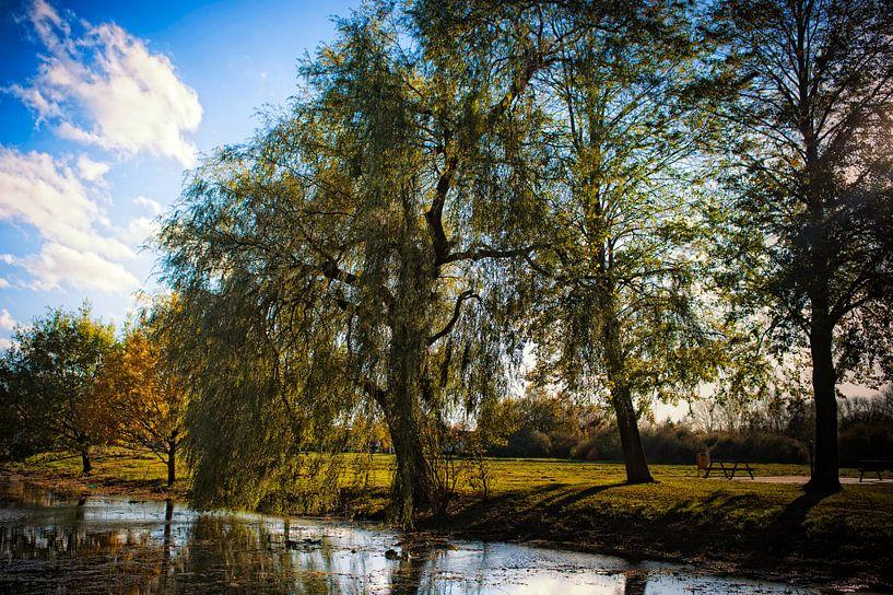 Brabant sur Huibert van der Meer