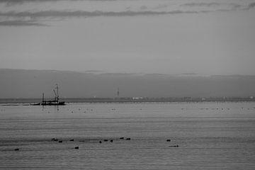 Vissersboot op het Markermeer. van Maarten Kooijenga