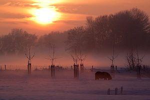 Winter zonsondergang van M.e. Amrani