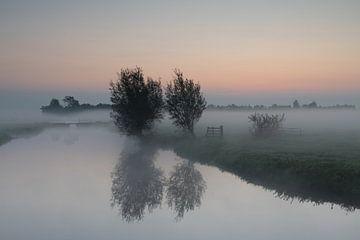 Zonsopkomst bij mist in de Donkse Laagten Alblasserwaard van Beeldbank Alblasserwaard