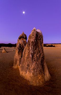 Spezieller Felsen im Pinnacles Wüsten-Nationalpark bei Sonnenuntergang kurz vor Perth in Aus von Guido Boogert