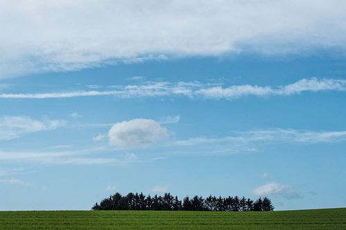 Bomeneiland van Marian Smeets