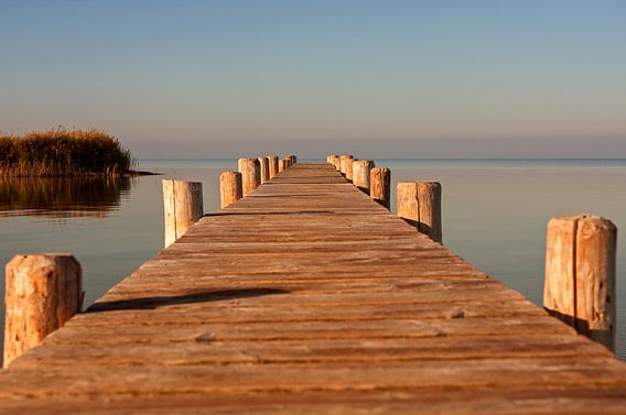 Boardwalk van Silvio Schoisswohl