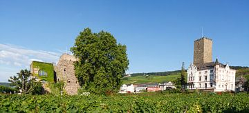 Ruedesheim am Rhein : Blick auf Brömserburg/Niederburg und Boosenburg, Oberburg