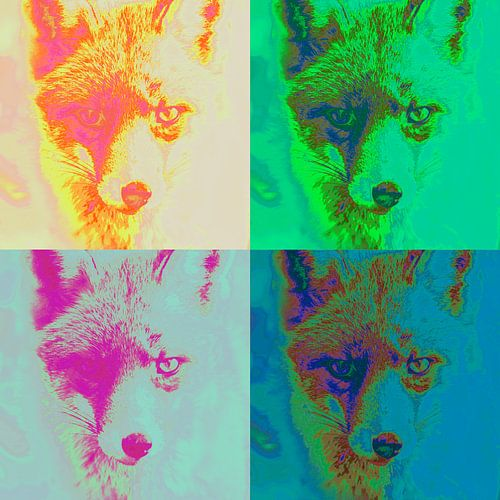 Vier artistieke vossen van