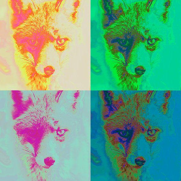 Vier artistieke vossen von Pierre Timmermans
