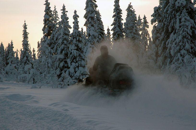snowscooter van Barbara Koppe