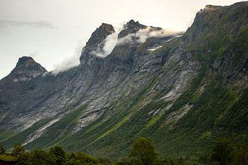 Berglandschaft in Norwegen von Karijn Seldam