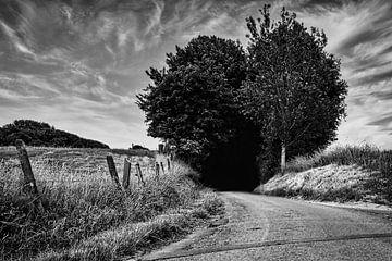 Der Weg, der in die Dunkelheit führt... von Niels Hemmeryckx
