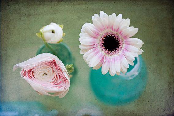 Bloemen van Marijke Trienekens
