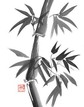 bamboo sur philippe imbert