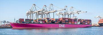 Containerschiff One Hanoi am Frachtterminal im Hafen von Rotterdam von Sjoerd van der Wal