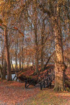 Herfst in Friesland 6. Staniastate in Oentsjerk. van Marcel Kieffer