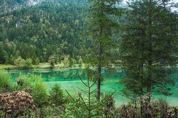 Groene rivier bij de Plansee in Oostenrijk van Linda Herfs
