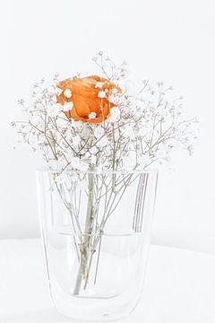 eenzame roos van Michael Schulz-Dostal