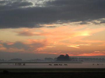 mistige morgen van bert jorritsma