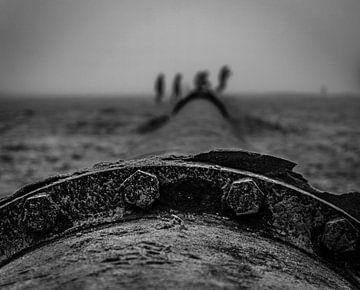Wandeling op het strand van Kristiaan Hartmann
