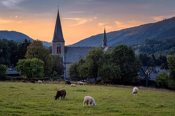 Pfarrkirche St. Katharina Assinghausen mit Schafen von Deimel Fotografie
