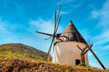 Windmolen bij Cabo da Gata Andalusië Spanje van Dieter Walther