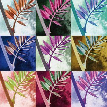 Kleurrijke bladeren van Willeke Vrij